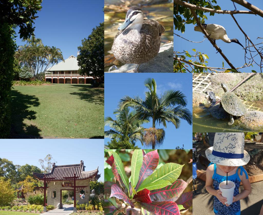 Bundaberg Botanischer Garten